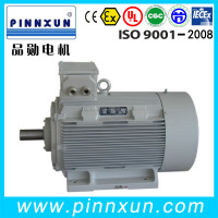 Y2 Cast Iron Frame Three Phase Electric AC Induction Motor