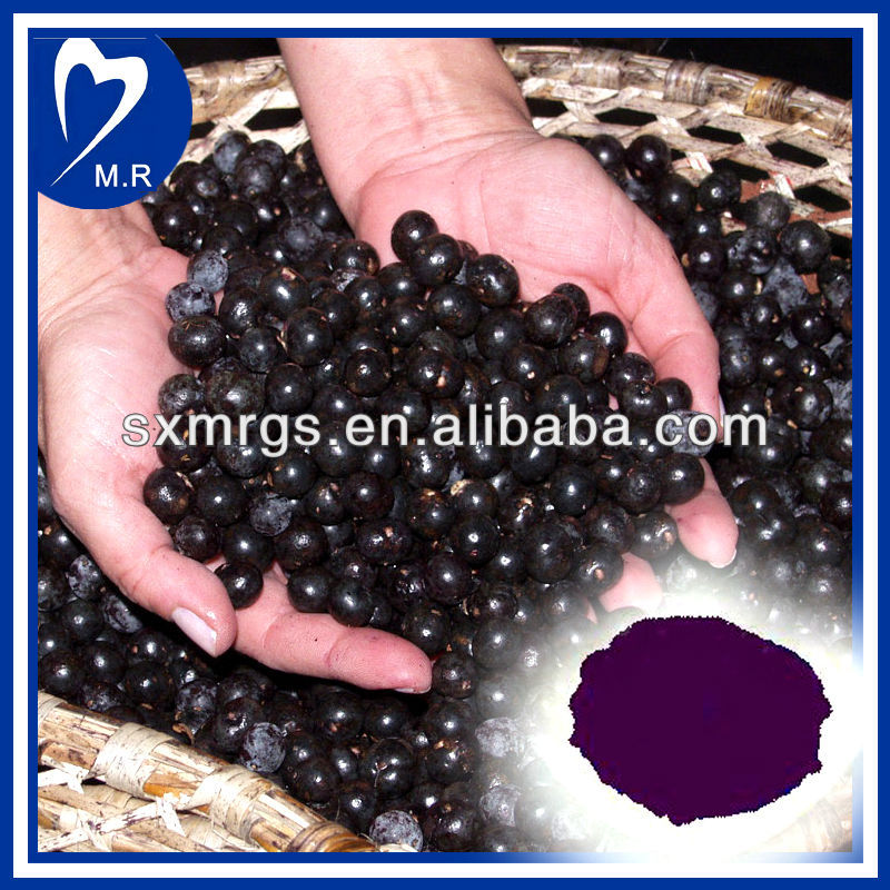 100% Natural acai berry extract powder well sold in Europe