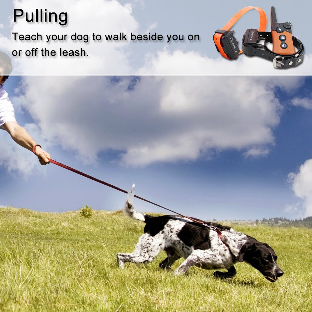 Ipets PET619-1 Vibration Shocking Collars For Small Dogs