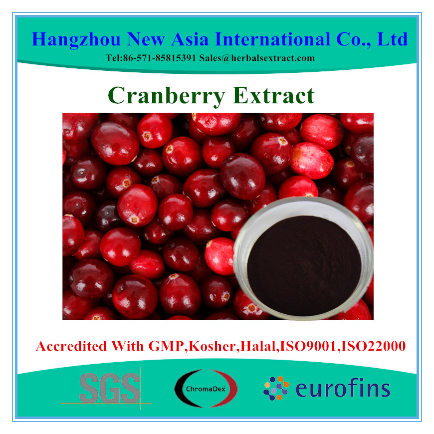 Pure Cranberry Extract Powder Proanthocyanidins 50% UV