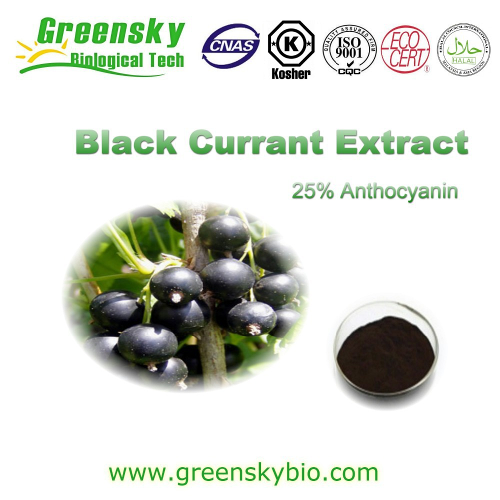 organic black currant extract , Black Currant Extract with 5%, 10%, 15%, 20%, 25% Anthocyanins UV/ HPLC
