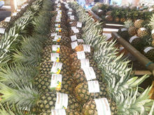 Fresh Pineapple Fruit