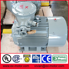 Atex ex d iic explosion proof electrical motor