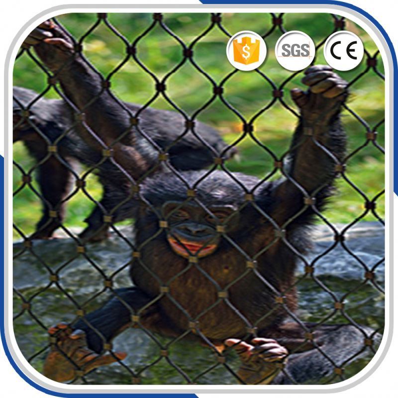 Quick Delivery Expanded Metal Zoo Wire Mesh