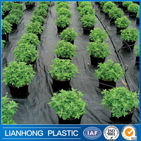 Factory direct CE black plastic ground cover