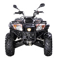 Hot selling 4x4 500cc Off Road Vehicle
