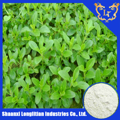 organic stevia extract granular with 90% Stevioside