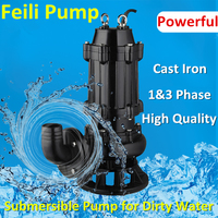 Competitive Price Full Service Cast Iron Pump Sewage Pump Mud Water Pump