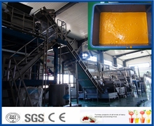 Beyond company sea buckthorn fruit raw fresh fruit juice making line with large capacity