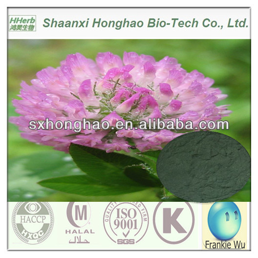 Premium Grade Isoflavones 8%/20% HPLC Red Clover Extract Powder