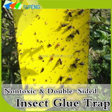 FUPENG 2016 Hot Sale Eco-Friendly Anti Fly Trap Insect Sticky