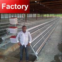 Automatic manure cleaning taiyu poultry battery cage for nigerian farm