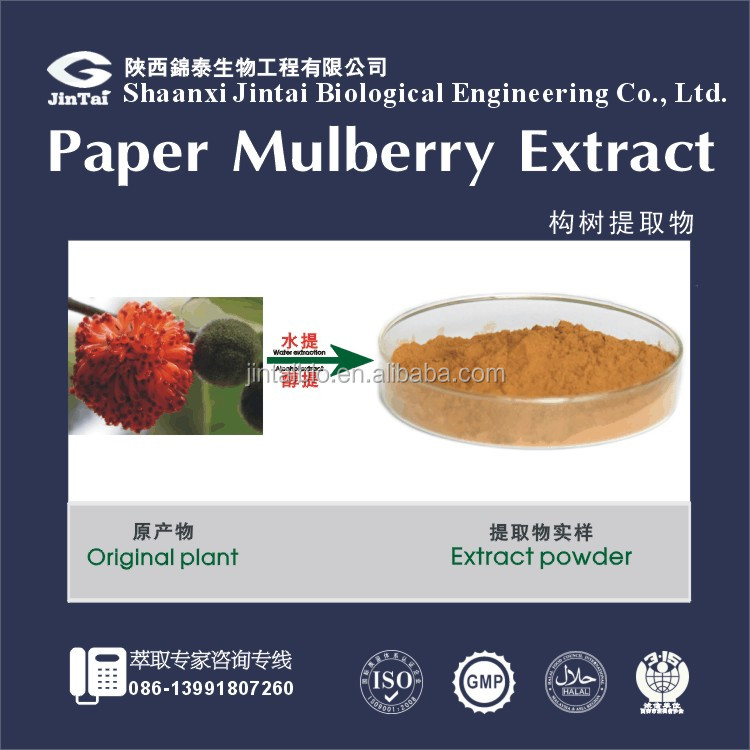 100% water soluble 10:1 paper mulberry extract powder