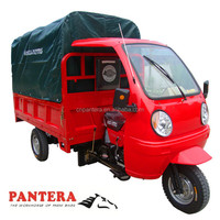 PT250ZH-10 QQ Cover Style 250cc Popular 3 Wheel Motorcycle