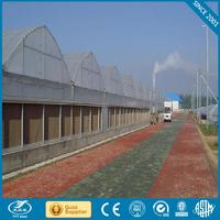 Professional plastic greenhouses for sale for wholesales