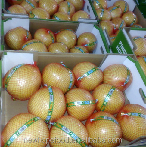 High quality fresh honey Pomelo