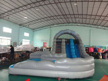 water slide giant , LZ-B3493 tph inflatable hippo water slide