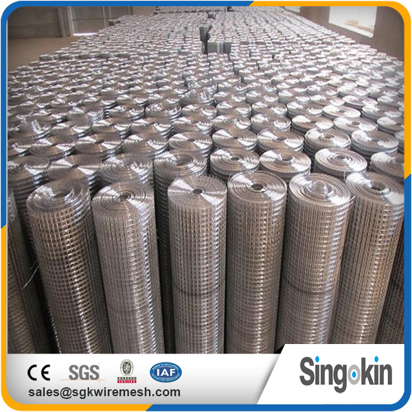 Hengshui wire cage 100 x 100mm galvanized welded wire mesh