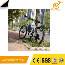 36V 250W green city cheap electric bike,city e-bike , e-bike