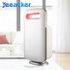Best Hepa Filter Dehumidifier And Air Purifier For Rooms