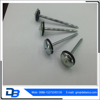 china umbrella head roofing nails corrugated roofing nails price