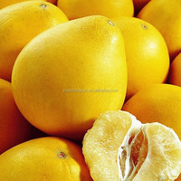 honey fresh pomelo