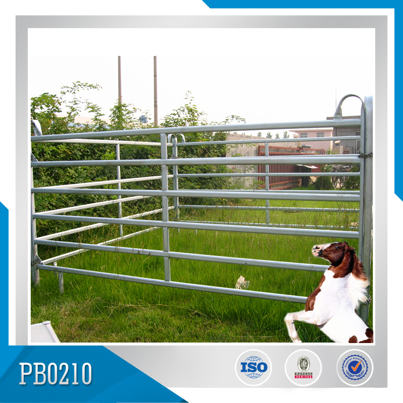 Welded Mesh Fence Horse Fence