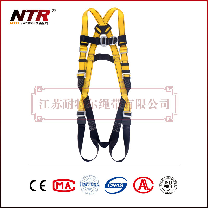 NTR BEESAFE 10P2 Constructive safety harness tested by advanced detection system