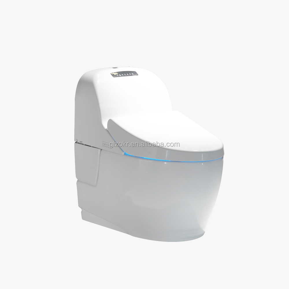 Electric Marine Bidet Intelligent Toilet