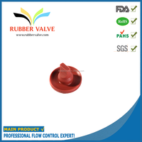 combination valve gas inlet valve