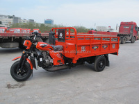 250cc 3 wheel trike motorcycle/adult pedal tricycle/trimotos sale