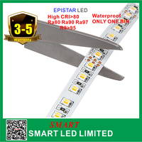 cob led strip 3527 IP68 Waterproof led light 12v 24v LED Flex Strip