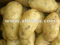 Fresh Potatoes from India