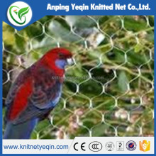 New Anti Bird Net/high quality anti bird net /factory hot sell anti bird net