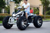 /product-detail/200cc-bull-electric-atv-with-double-drum-brake-60477659433.html