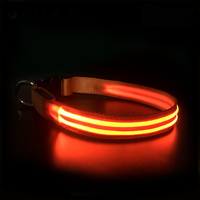 Super Bright Double-Line Waterproof & Usb Rechargeable Led Flashing Pet Collar