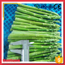 Wholedale IQF Asparagus Organic Vegetables Price
