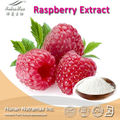 GMP Manufacturer Supply High Quality Raspberry extract powder,Fructus Rubi ,Raspberry Ketone 4%, 98%,99% GC