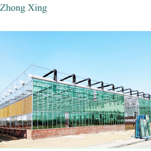 commercial greenhouse for sale from Zhongxing