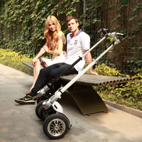 CHIC LS Factory price electric motor scooter