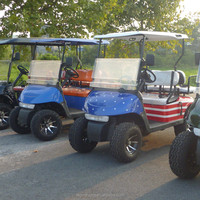 250CC gas golf cart with off road type and cheap frice from China