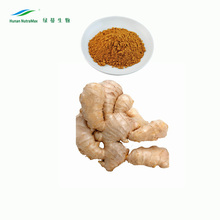 HPLC 5% Gingerols organic ginger extract