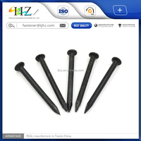 Direct factory competitive price black plated Carbon Concrete steel Nails
