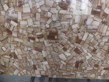 Factory price Low price black petrified wood Designs