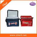 6 Can Insulated Cooler Bag