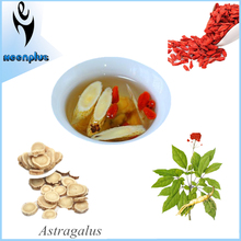 Private Label Available Organic Ginseng Tea