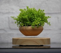 2016 New product levitating decoration plant, floating potted plant
