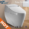 New bathroom model water pressure adjustable smart one piece intelligent toilet LZ-0701Z