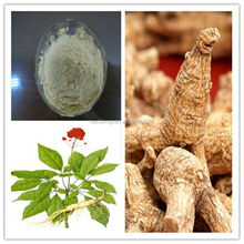 100% organic American ginseng extract from natural American ginseng