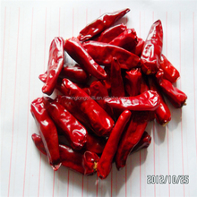 High quanlity dehydrated red sweet paprika chili for sauce